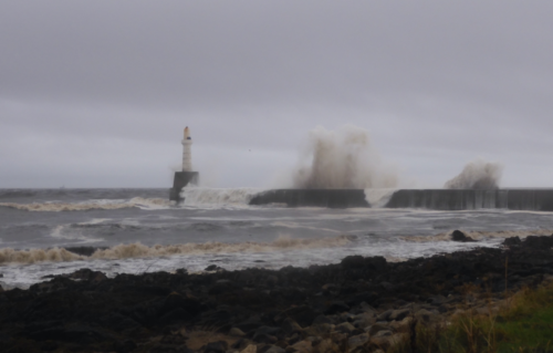From Aberdeen Harbour mouth